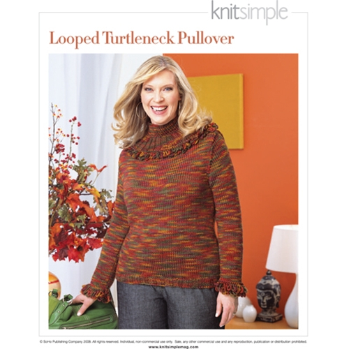 LOOPED TURTLENECK PULLOVER